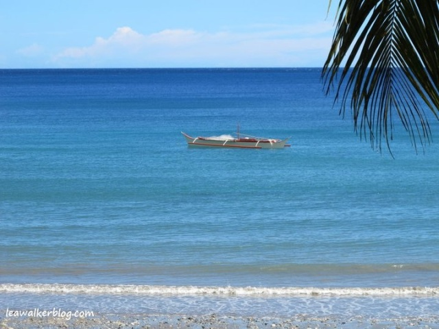 Taken in Manay, Davao Oriental on April, 2011.