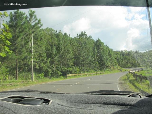Davao - Bukidnon Roadtrip (18)