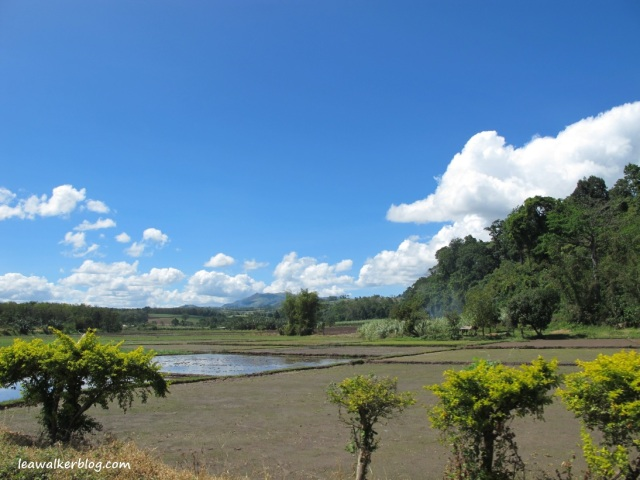 Davao - Bukidnon Roadtrip (6)
