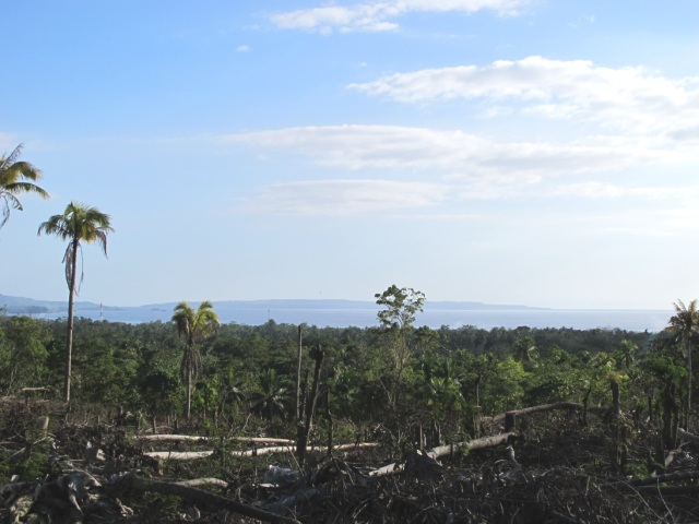 overlooking lots for sale in Samal Island (10)