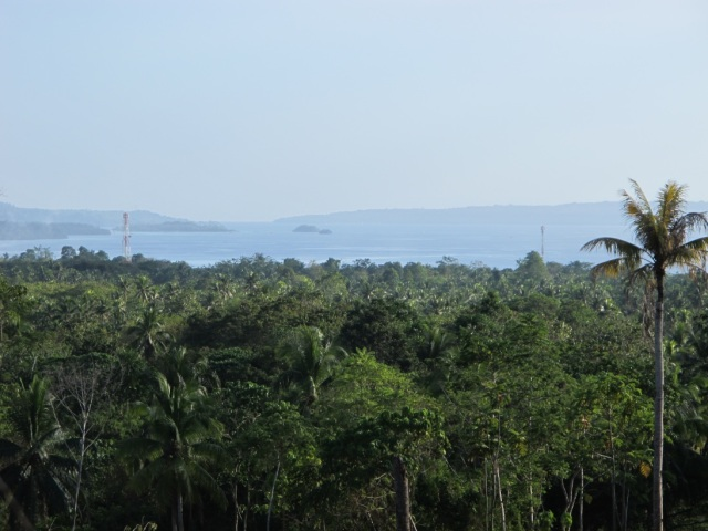 overlooking lots for sale in Samal Island (11)