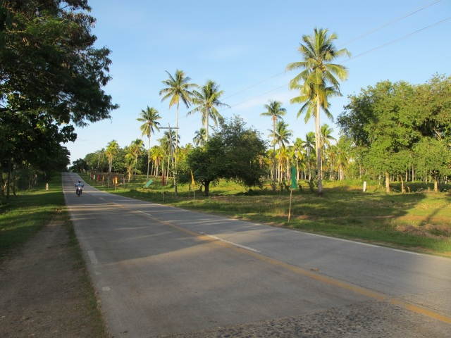 overlooking lots for sale in Samal Island (13)