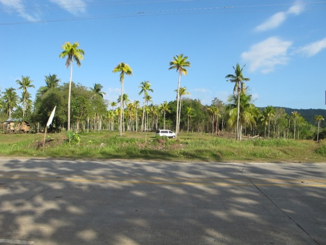overlooking lots for sale in Samal Island (2)