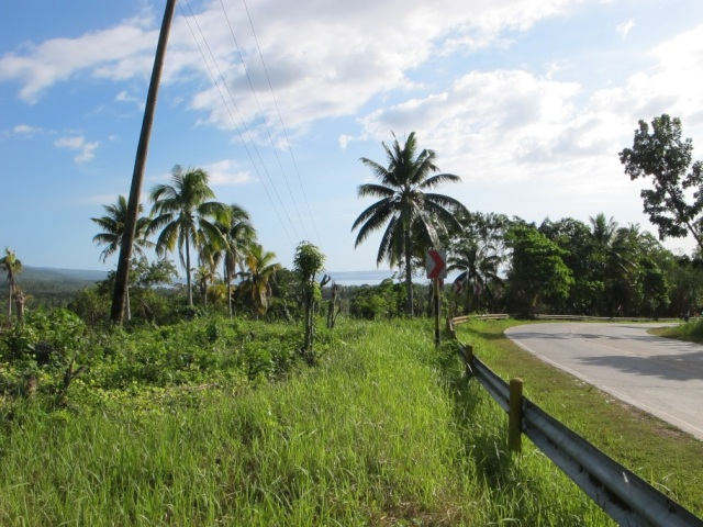 overlooking lots for sale in Samal Island (3)