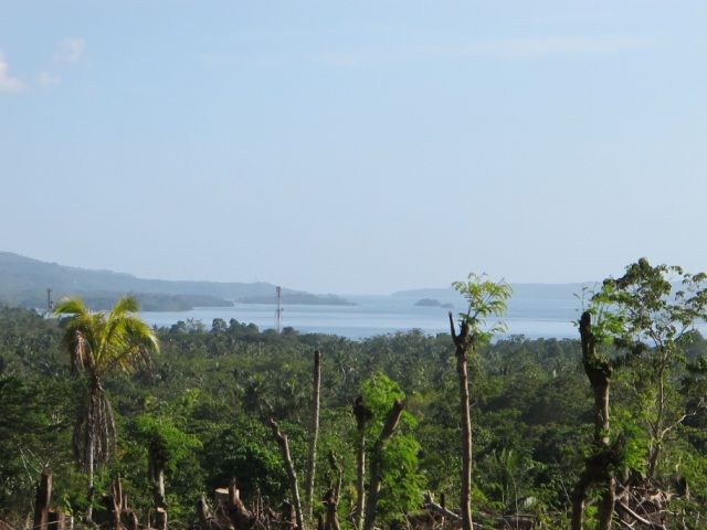 overlooking lots for sale in Samal Island (4)