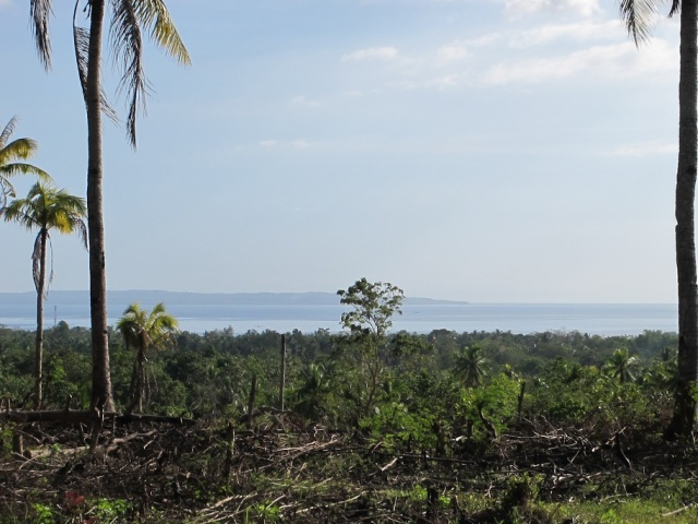 overlooking lots for sale in Samal Island (6)