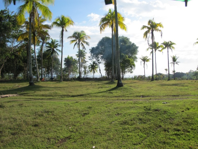 overlooking lots for sale in Samal Island (7)