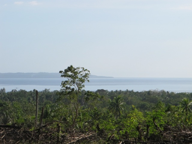 overlooking lots for sale in Samal Island (5)