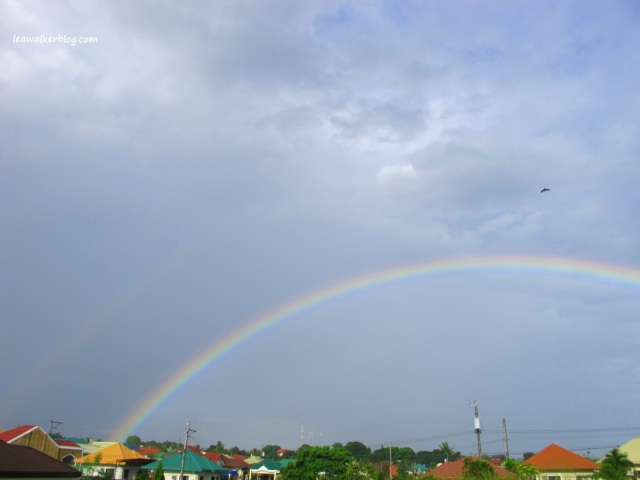 Beautiful right? I was amazed to see a second rainbow on top of the other one.. :)