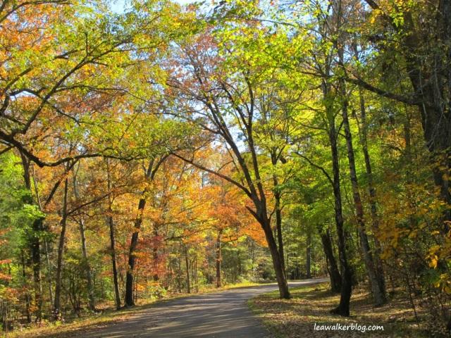 Shiloh National Park