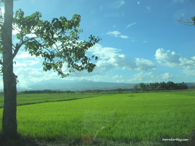 Somewhere in Valencia, Bukidnon.