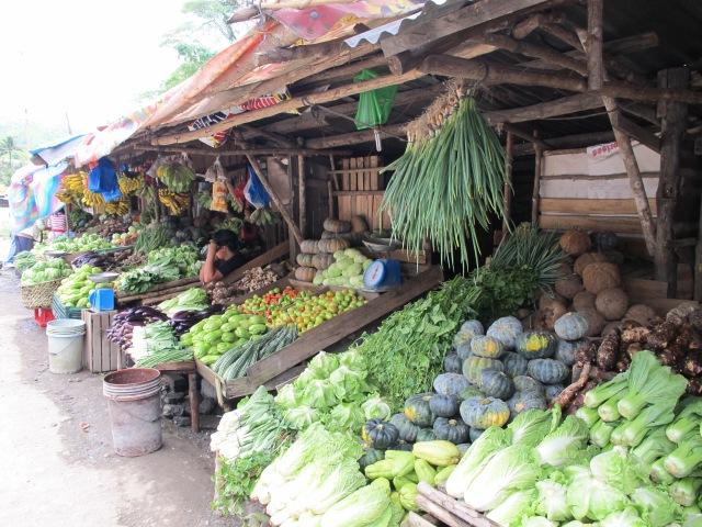 Maramag- Davao