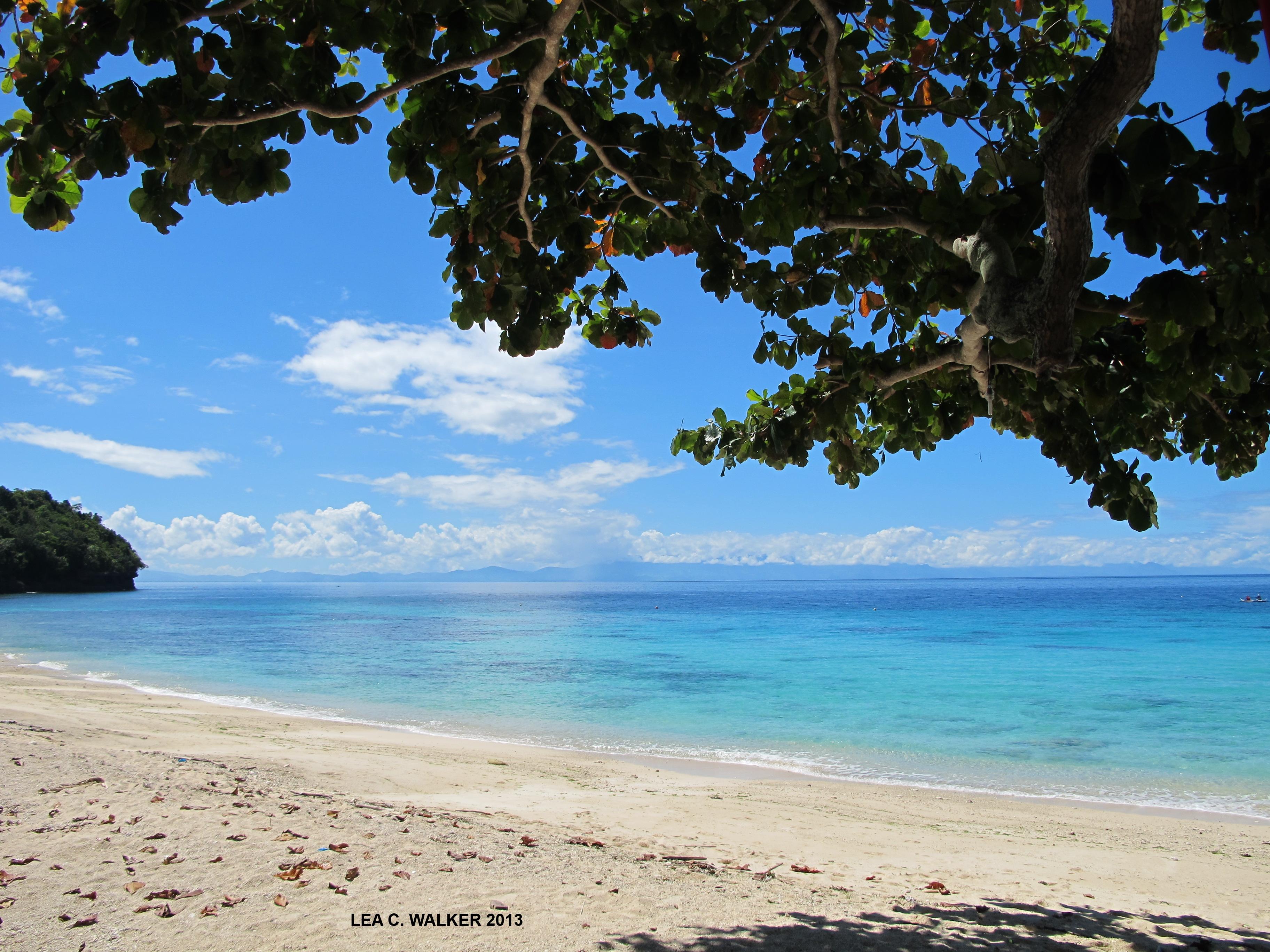 Samal Island Leawalkerblog
