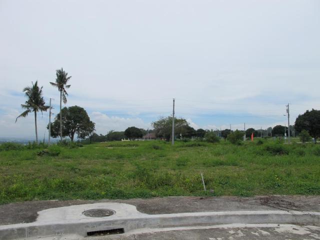 playa azalea lots for sale samal island philippines  (19)