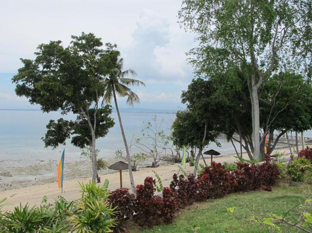 playa azalea lots for sale samal island philippines  (2)