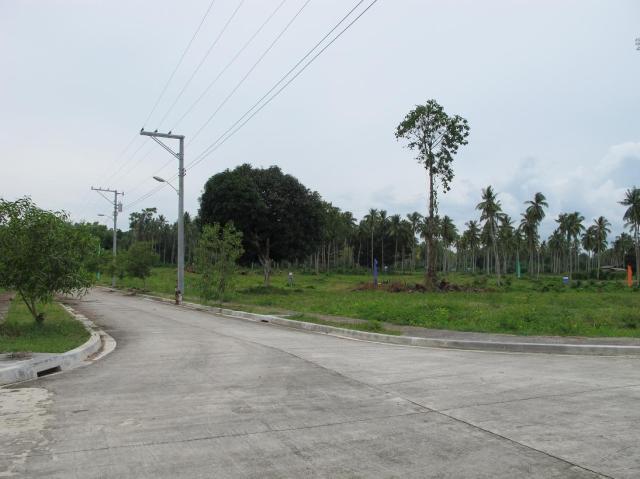 playa azalea lots for sale samal island philippines  (20)