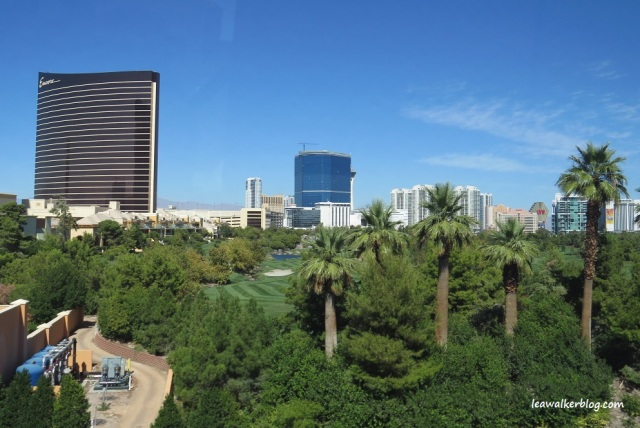 Las Vegas (10)
