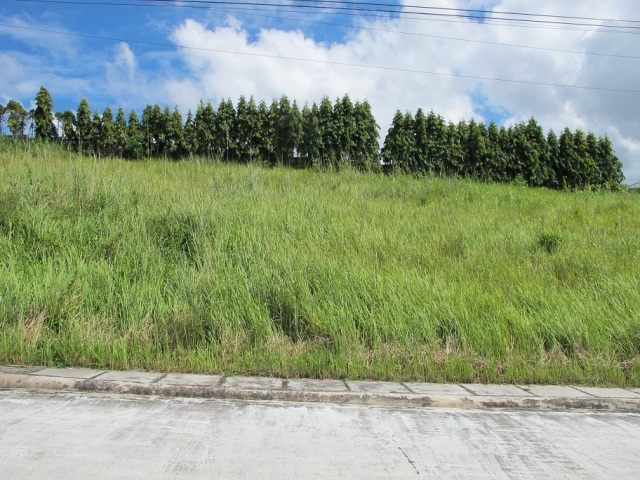 Monteritz Lots For Sale Davao City Philippines (11)