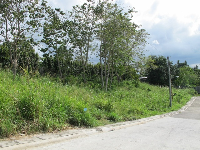 Monteritz Lots For Sale Davao City Philippines (14)