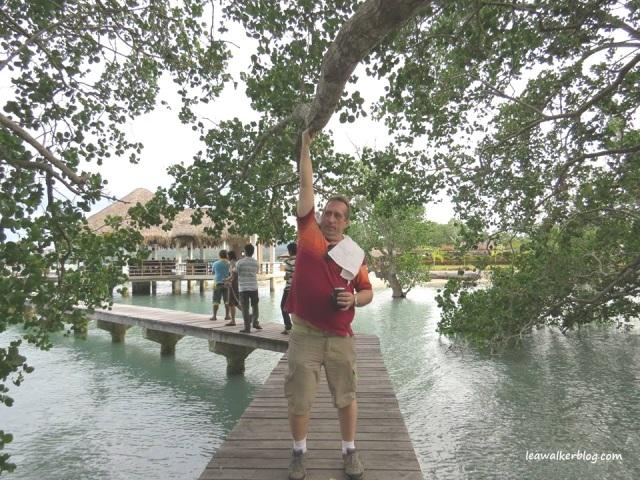 John, at the mangrove walk. :)