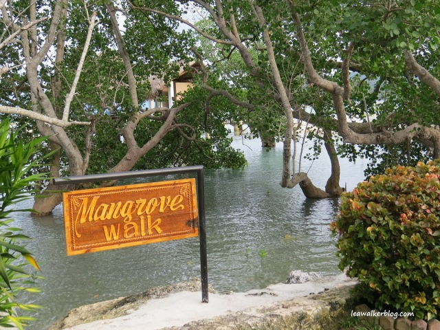 secdea beach resort, mangrove walk, samal island