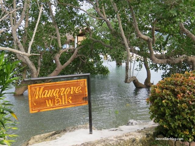 secdea beach resort, mangrove walk, samal island