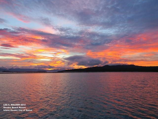 Secdea sunrise (3)