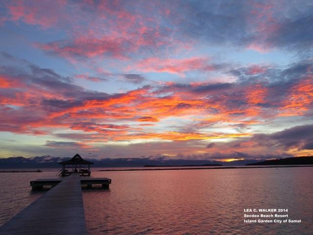 Secdea sunrise (4)