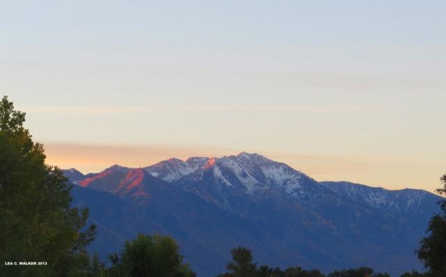Utah (1)