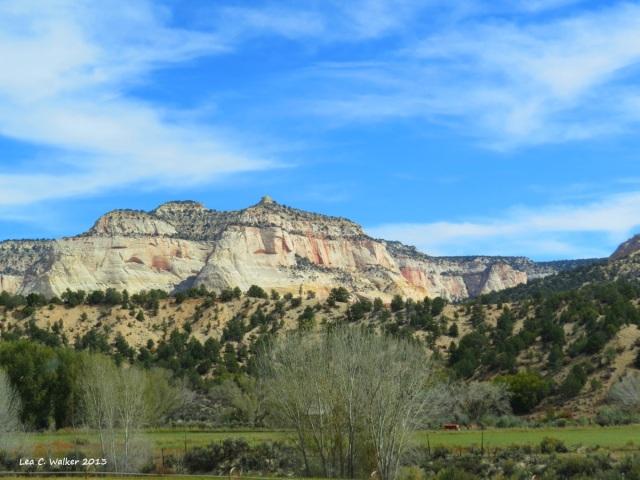 Utah (11)