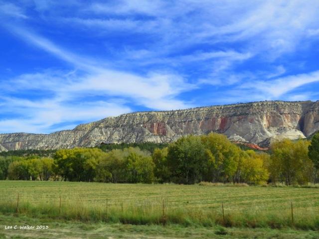 Utah (13)