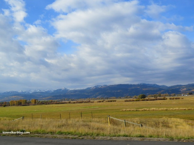 colorado, wyoming, grand teton national park, yellowstone national park