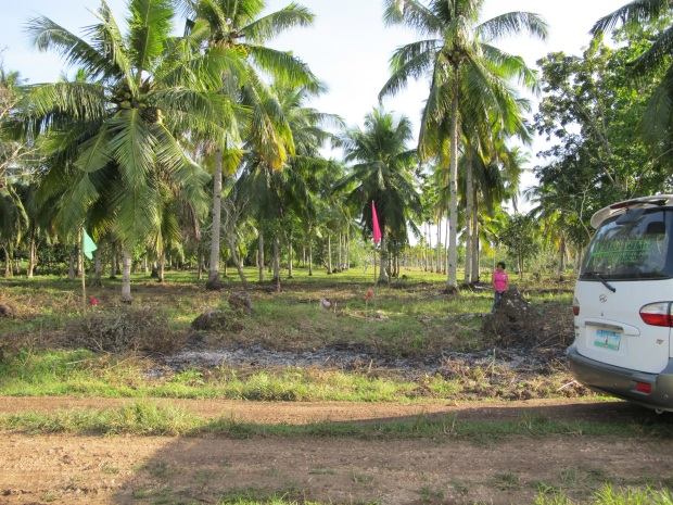 samal island residential property for sale (2)