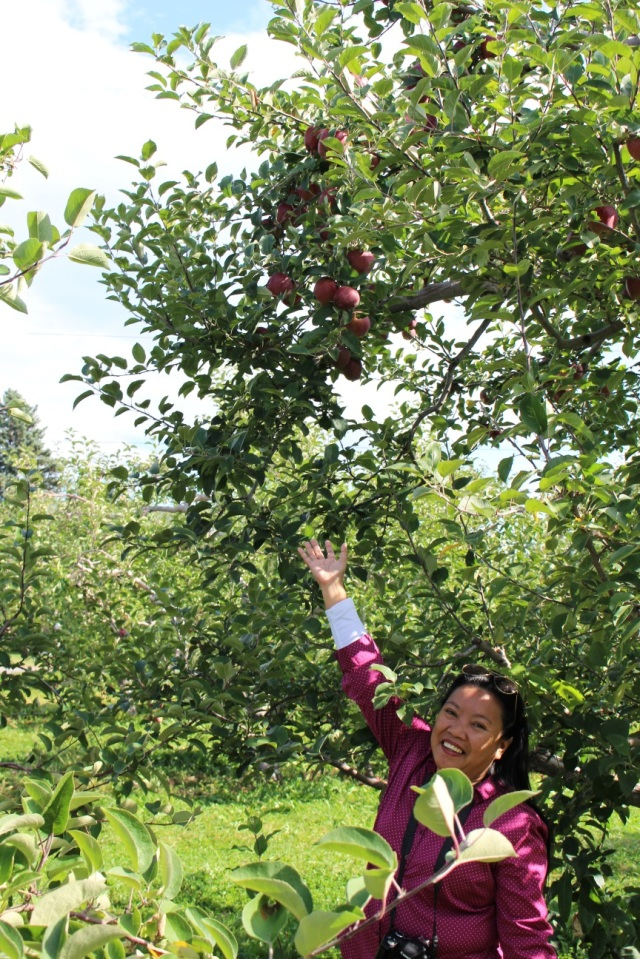 At the Adirondacks mountains, picking apples.