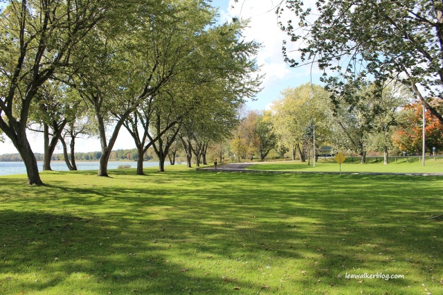 Brown's Bay Park (7)