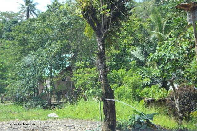 Roadtrip Day 1 - Davao to Butuan (6)