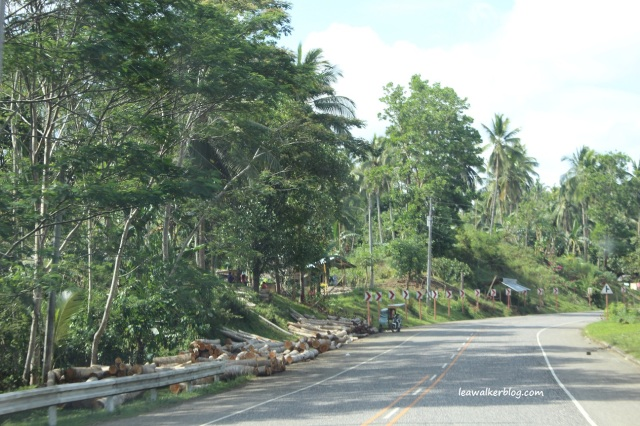 Roadtrip Day 1 - Davao to Butuan (9)