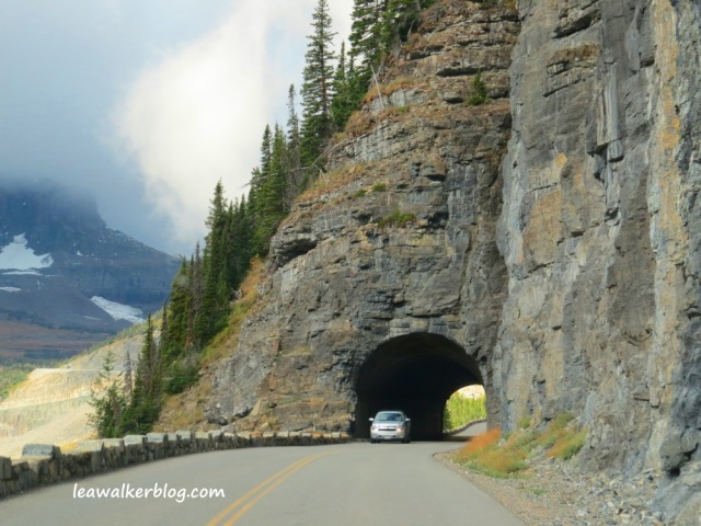 going to the sun road (15)