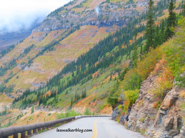 going to the sun road (21)