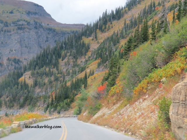 going to the sun road (22)
