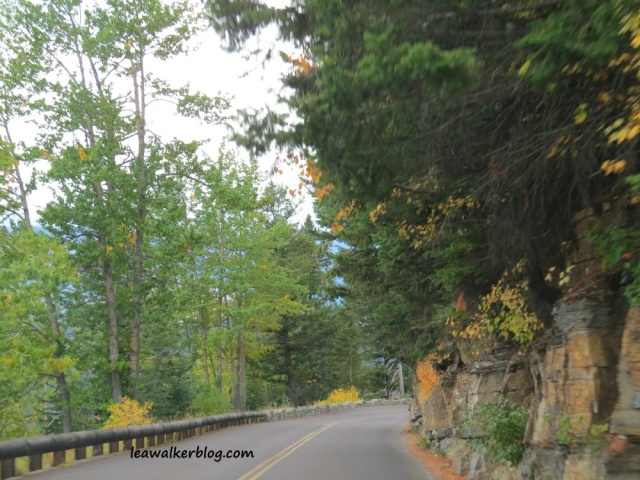 going to the sun road (24)
