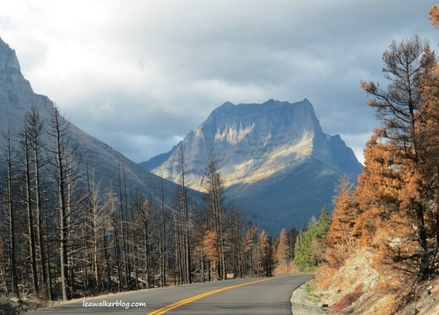 going to the sun road (8)